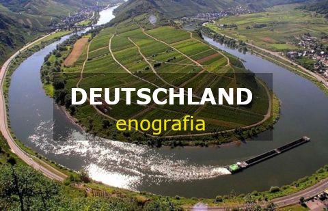 Germania enografia