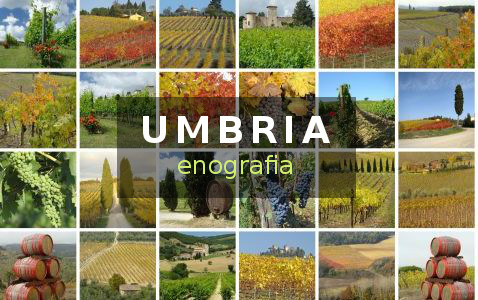 vini Umbria