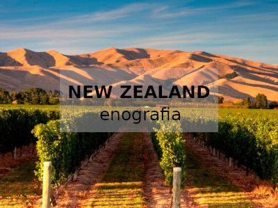 Nuova Zelanda enografia vini