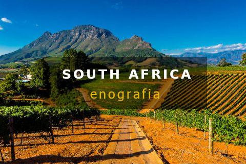 Sudafrica vini