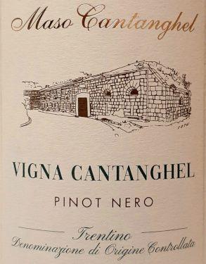 Pinot Nero Vigna Cantanghel 2016