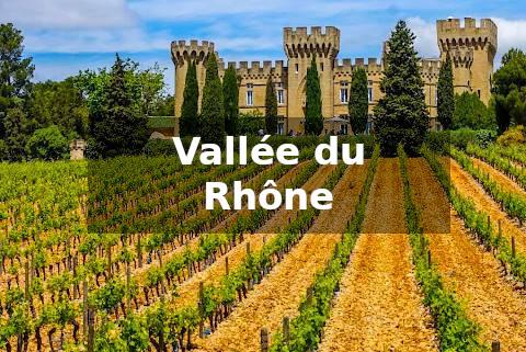 Vini della Valle del Rodano